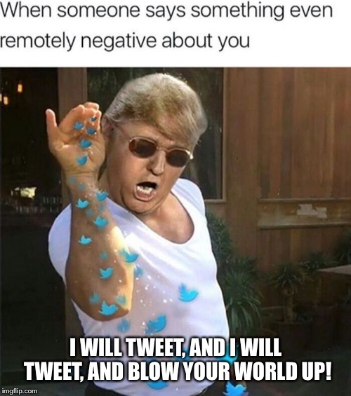 The tweeter  | I WILL TWEET, AND I WILL TWEET, AND BLOW YOUR WORLD UP! | image tagged in memes,donald trump,funny memes,politician | made w/ Imgflip meme maker