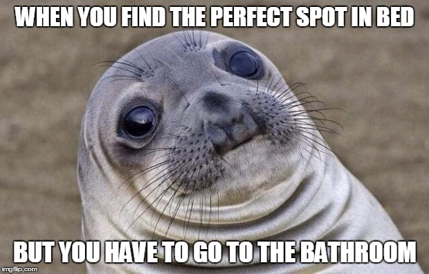 Awkward Moment Sealion Meme | WHEN YOU FIND THE PERFECT SPOT IN BED BUT YOU HAVE TO GO TO THE BATHROOM | image tagged in memes,awkward moment sealion | made w/ Imgflip meme maker