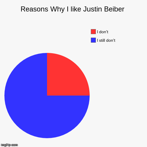 Reasons Why I like Justin Beiber | I still don't, I don't | image tagged in funny,pie charts | made w/ Imgflip pie chart maker