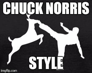 Venison anyone? It cooks immediately from the heat of his kick.  | CHUCK NORRIS STYLE | image tagged in chuck norris,hunting,deer | made w/ Imgflip meme maker
