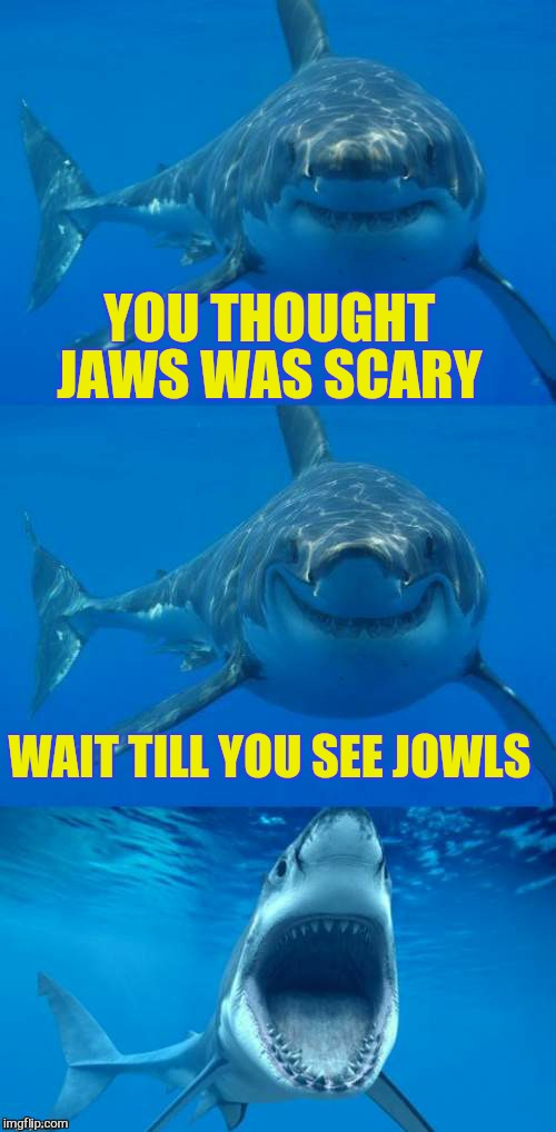 Bad Shark Pun  | YOU THOUGHT JAWS WAS SCARY WAIT TILL YOU SEE JOWLS | image tagged in bad shark pun | made w/ Imgflip meme maker