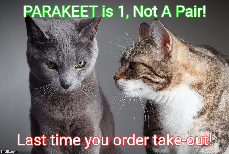 PARAKEET is 1, Not A Pair! Last time you order take-out! | image tagged in you didn't share | made w/ Imgflip meme maker