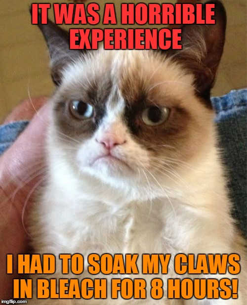 Grumpy Cat Meme | IT WAS A HORRIBLE EXPERIENCE I HAD TO SOAK MY CLAWS IN BLEACH FOR 8 HOURS! | image tagged in memes,grumpy cat | made w/ Imgflip meme maker