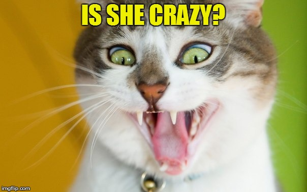 IS SHE CRAZY? | made w/ Imgflip meme maker