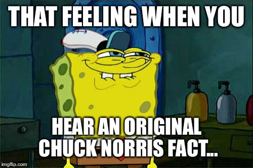 Dont You Squidward Meme | THAT FEELING WHEN YOU HEAR AN ORIGINAL CHUCK NORRIS FACT... | image tagged in memes,dont you squidward | made w/ Imgflip meme maker