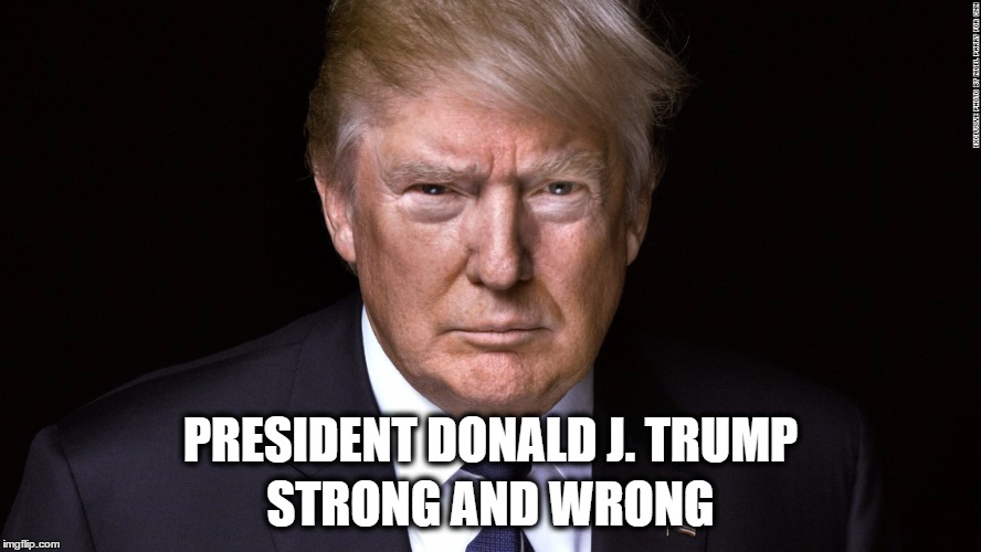 President Donald J. Trump - Strong and Wrong | PRESIDENT DONALD J. TRUMP STRONG AND WRONG | image tagged in donald trump,notmypresident,wakeupamerica,strongandwrong | made w/ Imgflip meme maker