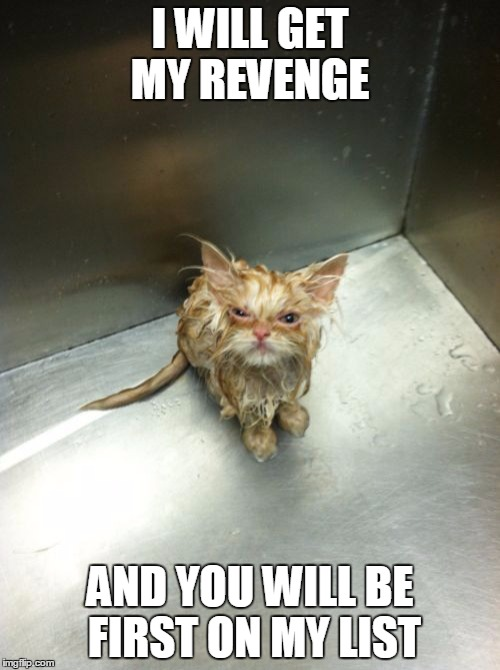 Kill You Cat Meme | I WILL GET MY REVENGE AND YOU WILL BE FIRST ON MY LIST | image tagged in memes,kill you cat | made w/ Imgflip meme maker