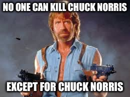 NO ONE CAN KILL CHUCK NORRIS EXCEPT FOR CHUCK NORRIS | made w/ Imgflip meme maker