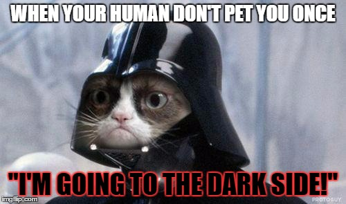 "I hate my human | WHEN YOUR HUMAN DON'T PET YOU ONCE ""I'M GOING TO THE DARK SIDE!"" 