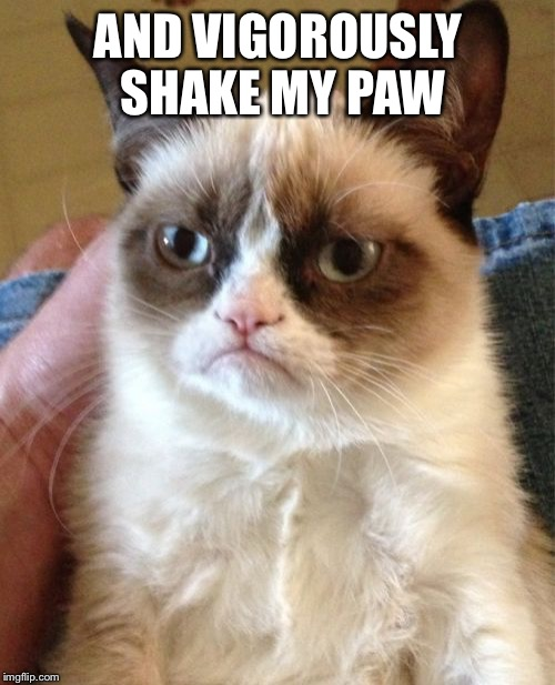 Grumpy Cat Meme | AND VIGOROUSLY SHAKE MY PAW | image tagged in memes,grumpy cat | made w/ Imgflip meme maker