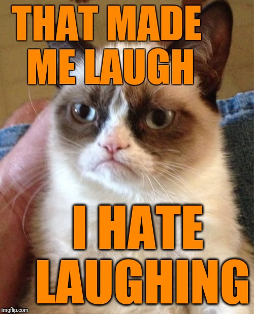 Grumpy Cat Meme | THAT MADE ME LAUGH I HATE LAUGHING | image tagged in memes,grumpy cat | made w/ Imgflip meme maker