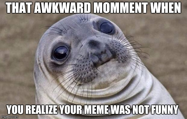 Awkward Moment Sealion Meme | THAT AWKWARD MOMMENT WHEN YOU REALIZE YOUR MEME WAS NOT FUNNY | image tagged in memes,awkward moment sealion | made w/ Imgflip meme maker