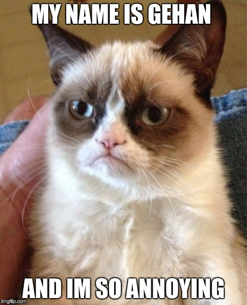 Grumpy Cat Meme | MY NAME IS GEHAN AND IM SO ANNOYING | image tagged in memes,grumpy cat | made w/ Imgflip meme maker