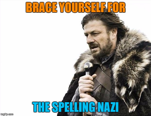 Brace Yourselves X is Coming Meme | BRACE YOURSELF FOR THE SPELLING NAZI | image tagged in memes,brace yourselves x is coming | made w/ Imgflip meme maker