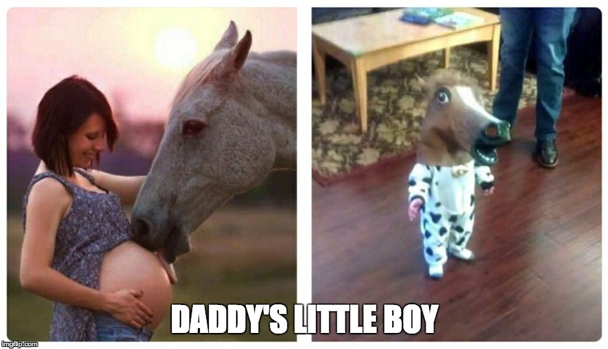 Funny Baby Meme Creator : Image tagged in funny funny animals funny baby imgflip