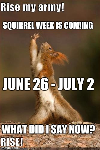 Squirrel week is coming gents! June 26 - July 2 a robroman event! | SQUIRREL WEEK IS COM!ING JUNE 26 - JULY 2 WHAT DID I SAY NOW? | image tagged in squirrel,squirrel week,a robroman event,protect your nut storage | made w/ Imgflip meme maker