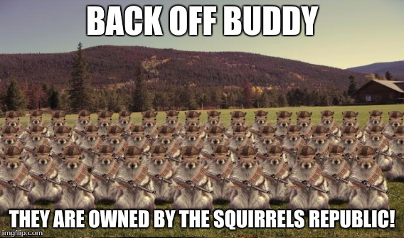 BACK OFF BUDDY THEY ARE OWNED BY THE SQUIRRELS REPUBLIC! | made w/ Imgflip meme maker