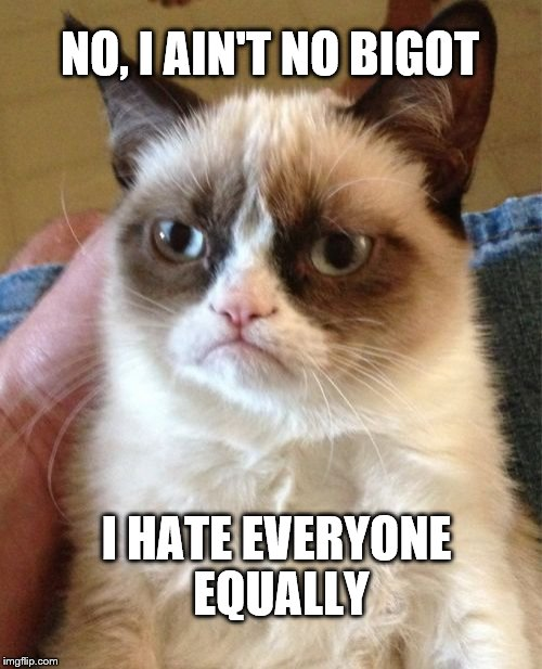Grumpy Cat Meme | NO, I AIN'T NO BIGOT I HATE EVERYONE EQUALLY | image tagged in memes,grumpy cat | made w/ Imgflip meme maker