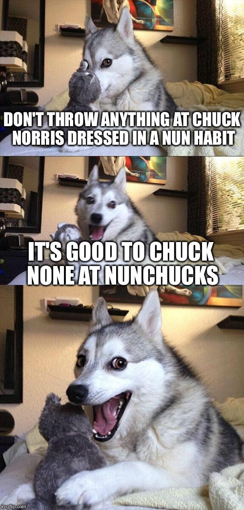 Bad Pun Dog Meme | DON'T THROW ANYTHING AT CHUCK NORRIS DRESSED IN A NUN HABIT IT'S GOOD TO CHUCK NONE AT NUNCHUCKS | image tagged in memes,bad pun dog | made w/ Imgflip meme maker