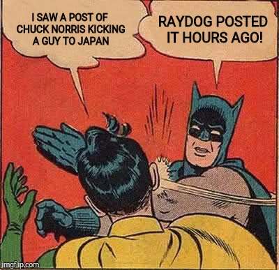 Batman Slapping Robin Meme | I SAW A POST OF CHUCK NORRIS KICKING A GUY TO JAPAN RAYDOG POSTED IT HOURS AGO! | image tagged in memes,batman slapping robin | made w/ Imgflip meme maker