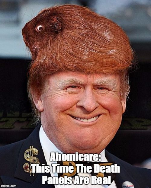 Abomicare: This Time The Death Panels Are Real | made w/ Imgflip meme maker