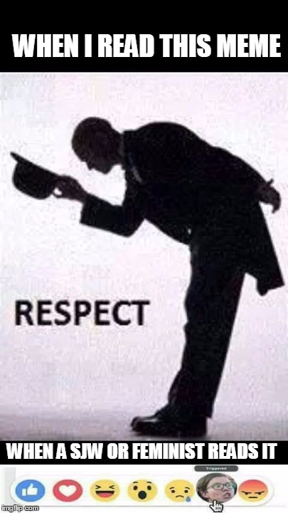 tip hat respect | WHEN I READ THIS MEME WHEN A SJW OR FEMINIST READS IT | image tagged in tip hat respect | made w/ Imgflip meme maker