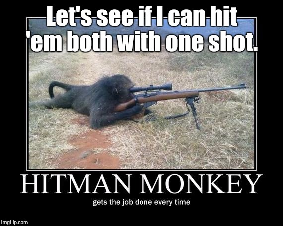 Hit Man Monkey | Let's see if I can hit 'em both with one shot. | image tagged in hit man monkey | made w/ Imgflip meme maker