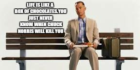 When chuck norris hits somebody, even there blood bleads |  LIFE IS LIKE A BOX OF CHOCOLATES.YOU JUST NEVER  KNOW WHEN CHUCK NORRIS WILL KILL YOU | image tagged in memes,chuck norris week,forrest gump box of chocolates,funny,chuck norris | made w/ Imgflip meme maker