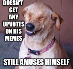 funny dog | DOESN'T GET ANY UPVOTES ON HIS MEMES STILL AMUSES HIMSELF | image tagged in funny dog | made w/ Imgflip meme maker