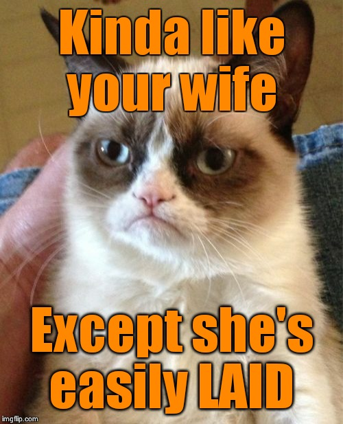 Grumpy Cat Meme | Kinda like your wife Except she's easily LAID | image tagged in memes,grumpy cat | made w/ Imgflip meme maker