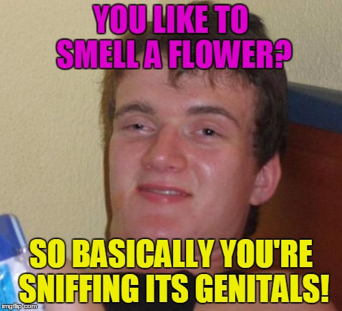 Finally it's springtime! But be aware of the flowers fellow flippers! | YOU LIKE TO SMELL A FLOWER? SO BASICALLY YOU'RE SNIFFING ITS GENITALS! | image tagged in memes,10 guy,funny,flowers,hilarious | made w/ Imgflip meme maker