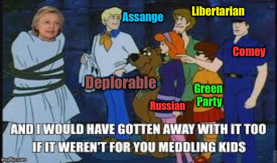 Clinton President | Assange Libertarian Comey Green Party Russian Deplorable | image tagged in deplorable,james comey,libertarian,green party,russians,julian assange | made w/ Imgflip meme maker