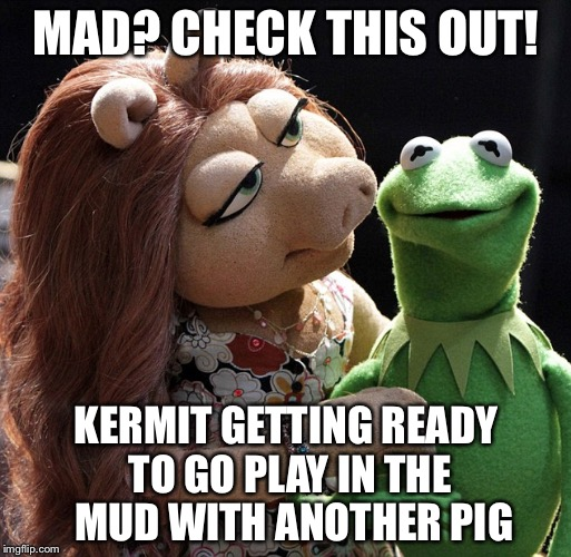 MAD? CHECK THIS OUT! KERMIT GETTING READY TO GO PLAY IN THE  MUD WITH ANOTHER PIG | made w/ Imgflip meme maker