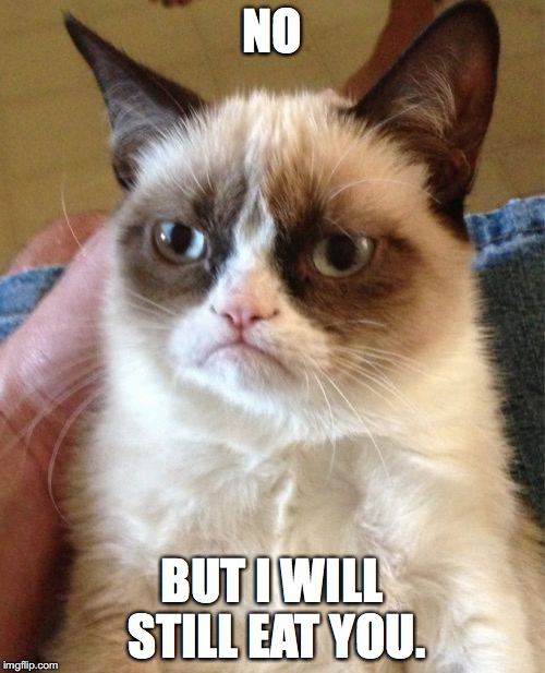 Grumpy Cat Meme | NO BUT I WILL STILL EAT YOU. | image tagged in memes,grumpy cat | made w/ Imgflip meme maker