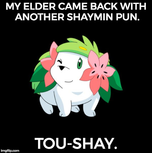 Touché. - Pokemon Week an AsrielDreemerr event | MY ELDER CAME BACK WITH ANOTHER SHAYMIN PUN. TOU-SHAY. | image tagged in winking shaymin,bad pun,funny,memes,pokemon week | made w/ Imgflip meme maker