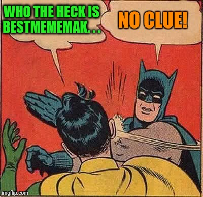 Batman Slapping Robin Meme | WHO THE HECK IS BESTMEMEMAK. . . NO CLUE! | image tagged in memes,batman slapping robin | made w/ Imgflip meme maker