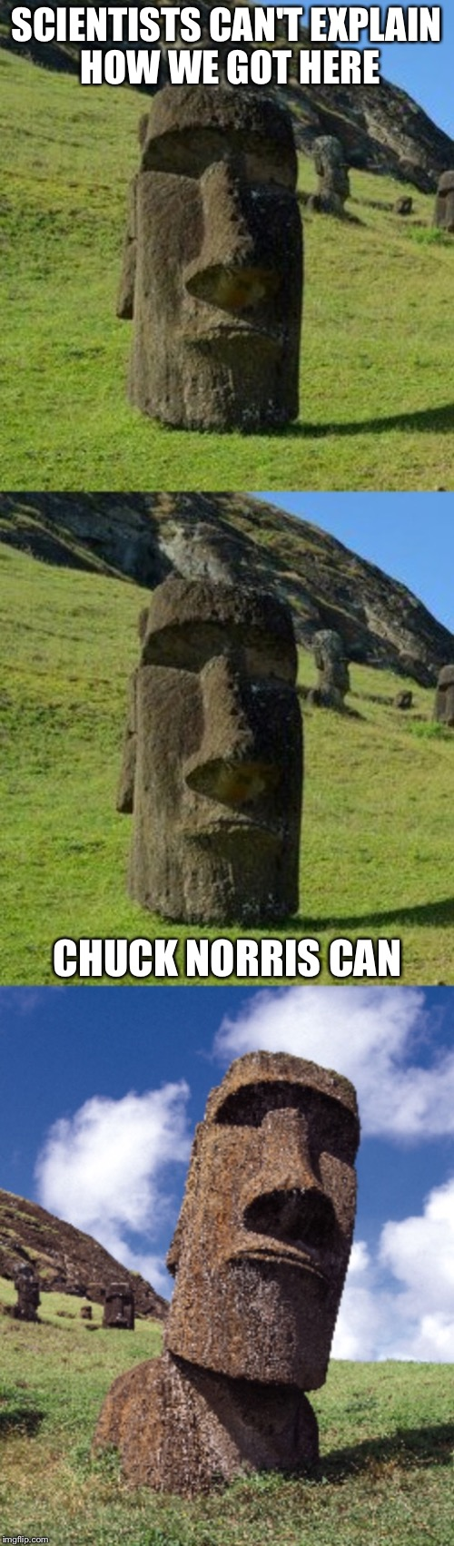 Bad Pun Moai | SCIENTISTS CAN'T EXPLAIN HOW WE GOT HERE CHUCK NORRIS CAN | image tagged in bad pun moai,memes,chuck norris week | made w/ Imgflip meme maker