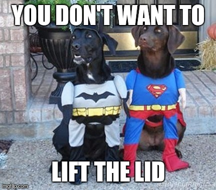Superhero dogs | YOU DON'T WANT TO LIFT THE LID | image tagged in superhero dogs | made w/ Imgflip meme maker
