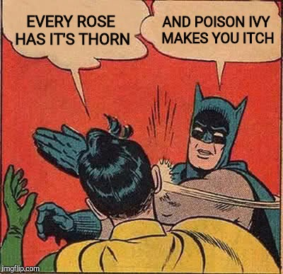 Batman Slapping Robin Meme | EVERY ROSE HAS IT'S THORN AND POISON IVY MAKES YOU ITCH | image tagged in memes,batman slapping robin | made w/ Imgflip meme maker