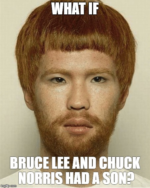 Chuck Lee | WHAT IF BRUCE LEE AND CHUCK NORRIS HAD A SON? | image tagged in chuck norris,chuck norris week,bruce lee,love child,memes,stolen art | made w/ Imgflip meme maker