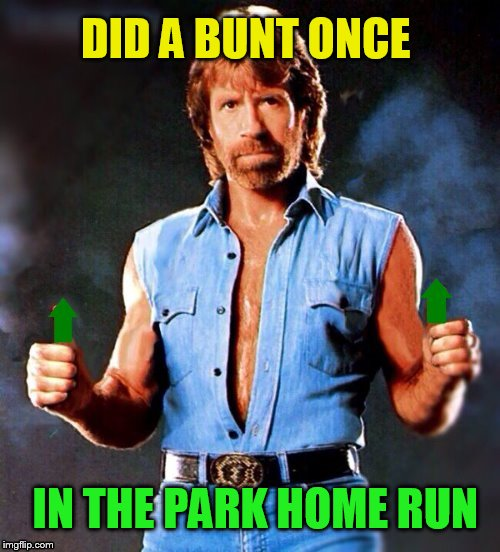 IN THE PARK HOME RUN DID A BUNT ONCE | made w/ Imgflip meme maker