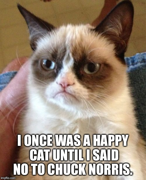 Grumpy Cat Meme | I ONCE WAS A HAPPY CAT UNTIL I SAID NO TO CHUCK NORRIS. | image tagged in memes,grumpy cat | made w/ Imgflip meme maker