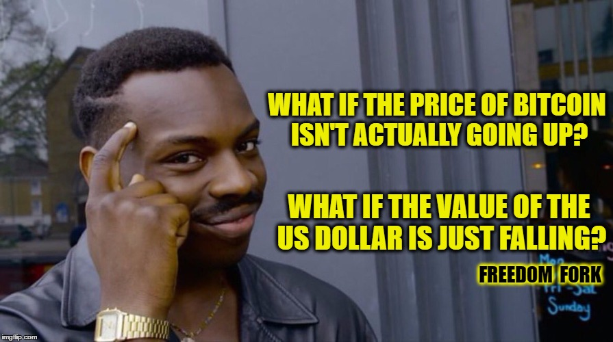 Roll Safe Think About It Meme | WHAT IF THE PRICE OF BITCOIN ISN'T ACTUALLY GOING UP? WHAT IF THE VALUE OF THE US DOLLAR IS JUST FALLING? FREEDOM  FORK | image tagged in smart black dude | made w/ Imgflip meme maker