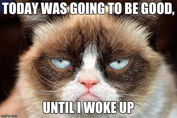 Grumpy Cat Not Amused | TODAY WAS GOING TO BE GOOD, UNTIL I WOKE UP | image tagged in memes,grumpy cat not amused,grumpy cat | made w/ Imgflip meme maker