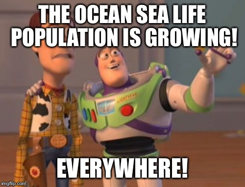 X, X Everywhere Meme | THE OCEAN SEA LIFE POPULATION IS GROWING! EVERYWHERE! | image tagged in memes,x,x everywhere,x x everywhere | made w/ Imgflip meme maker