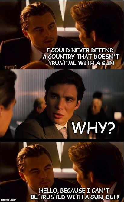 Gun trust | I COULD NEVER DEFEND A COUNTRY THAT DOESN'T TRUST ME WITH A GUN WHY? HELLO, BECAUSE I CAN'T BE TRUSTED WITH A GUN, DUH! | image tagged in memes,inception | made w/ Imgflip meme maker