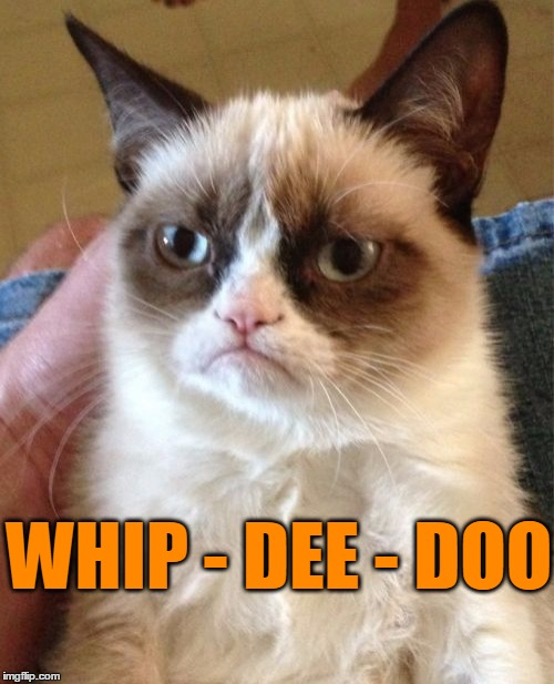 Grumpy Cat Meme | WHIP - DEE - DOO | image tagged in memes,grumpy cat | made w/ Imgflip meme maker