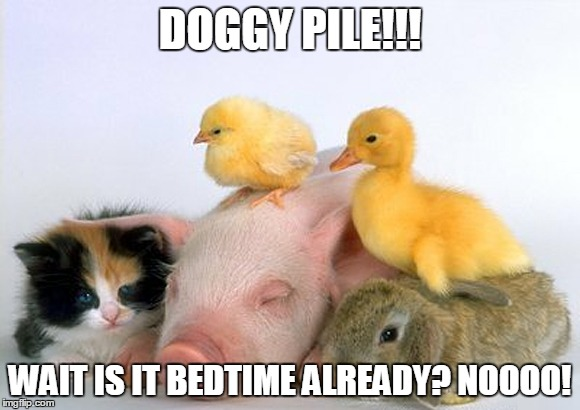 Get Off Me It's Heavy!!! | DOGGY PILE!!! WAIT IS IT BEDTIME ALREADY? NOOOO! | image tagged in baby animals | made w/ Imgflip meme maker