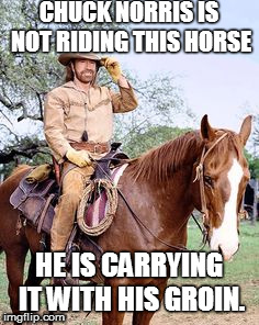 chuck norris week | CHUCK NORRIS IS NOT RIDING THIS HORSE HE IS CARRYING IT WITH HIS GROIN. | image tagged in chuck norris week | made w/ Imgflip meme maker