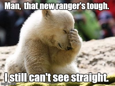 Cute Bear | Man,  that new ranger's tough. I still can't see straight. | image tagged in cute bear | made w/ Imgflip meme maker